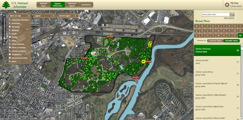 Arboretum Plant Explorer (ABE): interactive map and plant finder
