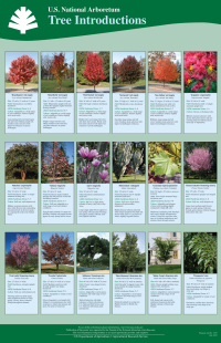 Tree Introductions Poster (3.7 MB PDF)