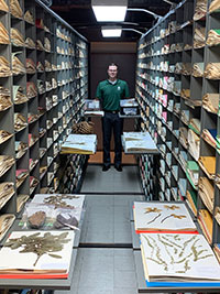 Dr. Svoboda with specimens in the herbarium